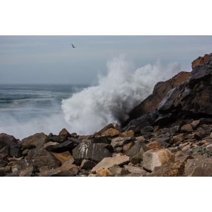Κύματα 5